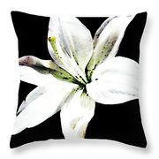 White Lily - Elegant Black And White Floral Art By Sharon Cummings Throw Pillow by Sharon Cummings