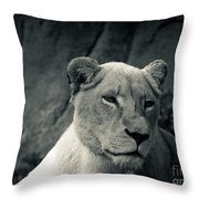 White Lioness Throw Pillow
