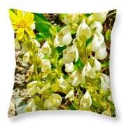 White Locoweed On Highline Trail In Glacier National Park-montana Throw Pillow