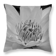 White Lotus 2 Bw Throw Pillow