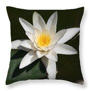 My White Lotus Throw Pillow