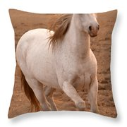 White Mare Approaches Number One Close Up Brighter Throw Pillow