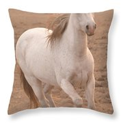 White Mare Approaches Number One Close Up Muted Throw Pillow