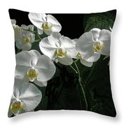 White Moth Orchid Phalaenopsis And Ferns Throw Pillow