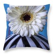 White Mum In Striped Vase Throw Pillow