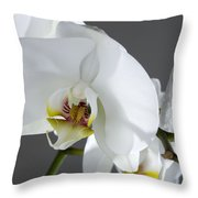 White Orchid 1b Throw Pillow