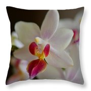 White Orchid Close Throw Pillow