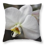 White Orchid Throw Pillow by Elisabeth Witte