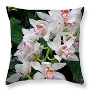 White Orchid In Full Bloom Throw Pillow