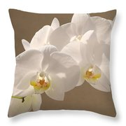 White Orchid Photograph Throw Pillow