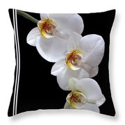 White Orchids On Black Vertical Throw Pillow
