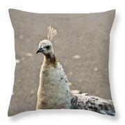 White Peacock Throw Pillow