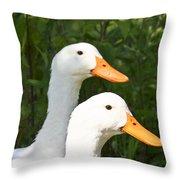 White Pekin Duck Throw Pillow