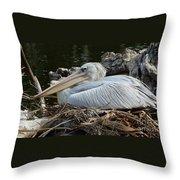 White Pelican 1 Throw Pillow