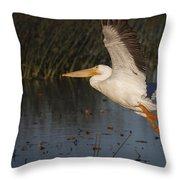 White Pelican 198 Throw Pillow