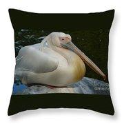White Pelican Sitting Throw Pillow