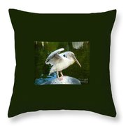 White Pelican Standing  Throw Pillow