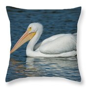 White Pelican Swimming Throw Pillow