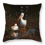 White Pelican Visitors To Gilbert Arizona Throw Pillow