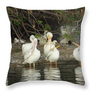 White Pelicans Grooming Throw Pillow