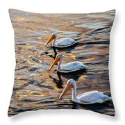 White Pelicans  In Golden Water Throw Pillow