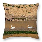 White Pelicans Throw Pillow