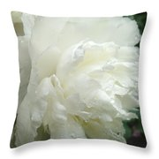 White Peony After Rain Throw Pillow