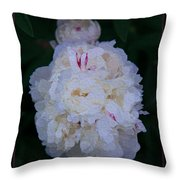White Peony And Companion Abstract Flower Painting Throw Pillow