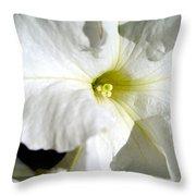 White Petunia Throw Pillow