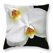 White Phalaenopsis Orchid Flowers Throw Pillow