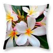 White Plumeria - 2 Throw Pillow