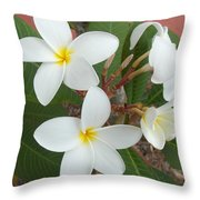 White Plumeria Throw Pillow