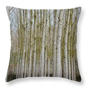 White Poles IIi Throw Pillow