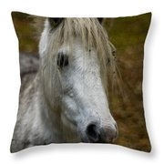 White Pony Throw Pillow