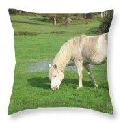 White Pony On The Moors Throw Pillow