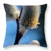 White Pussy Willow In Bloom Throw Pillow