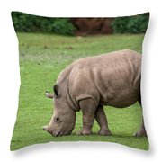White Rhino 12 Throw Pillow