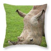 White Rhino 15 Throw Pillow