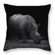 White Rhinocero Throw Pillow
