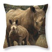 White Rhinoceros And Baby Lewa Kenya Throw Pillow