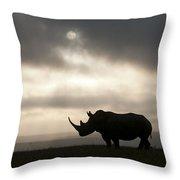 White Rhinoceros At Sunset Kenya Throw Pillow
