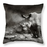 White Rhinoceros Throw Pillow