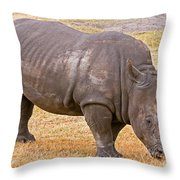 White Rhinoceros Throw Pillow