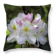 White Rhododendren Throw Pillow