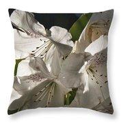 White Rhododendron B Throw Pillow