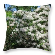 White Rhododendron Blooming In The Garden Throw Pillow
