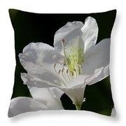 White Rhododendron Throw Pillow