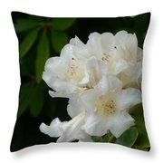 White Rhododendron With Tears Throw Pillow