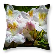White Rhododendron In Sunlight Throw Pillow