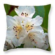 White Rhododendrons Throw Pillow